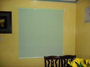 Green Sunscreen Roller Shade
