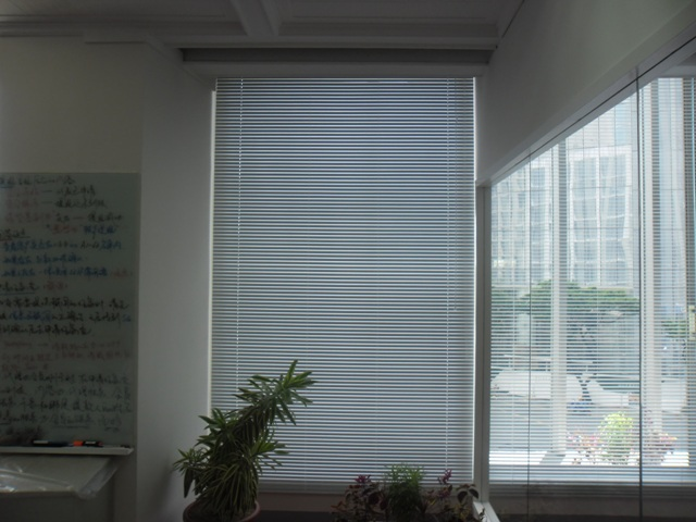 Venetian Blinds : White Color for Offices