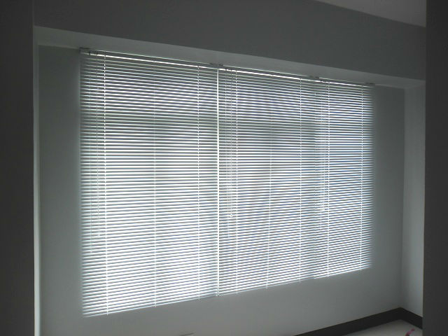 Mini Blinds: White Satin
