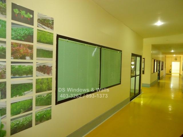 Apple green venetian blinds